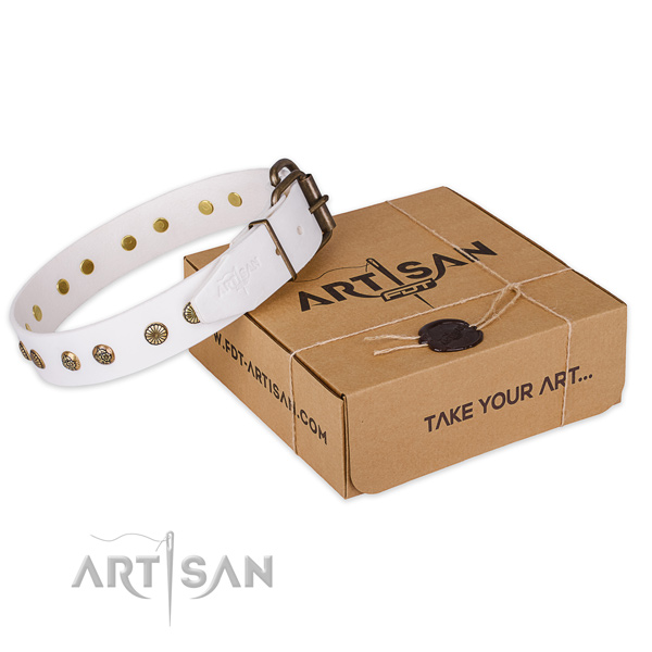 Sensational white leather dog collar