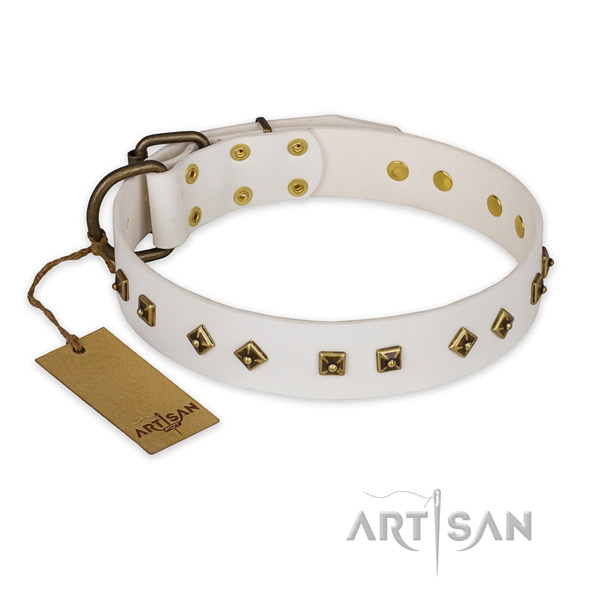 White leather dog collar with rust-resistant studs