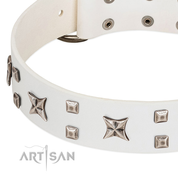 Walking dog collar with chrome-plated square studs and stars
