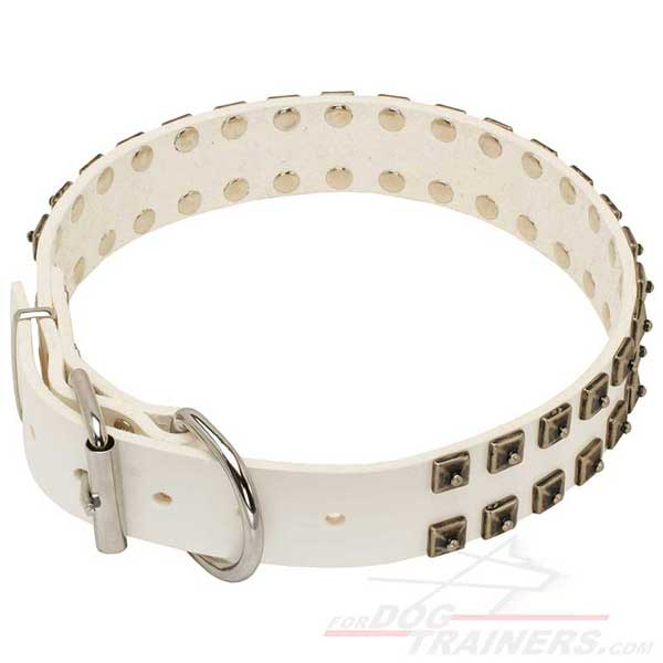 Wide Leather Collar of Crystal White Color