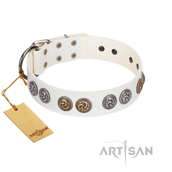 White leather dog collar with round studs