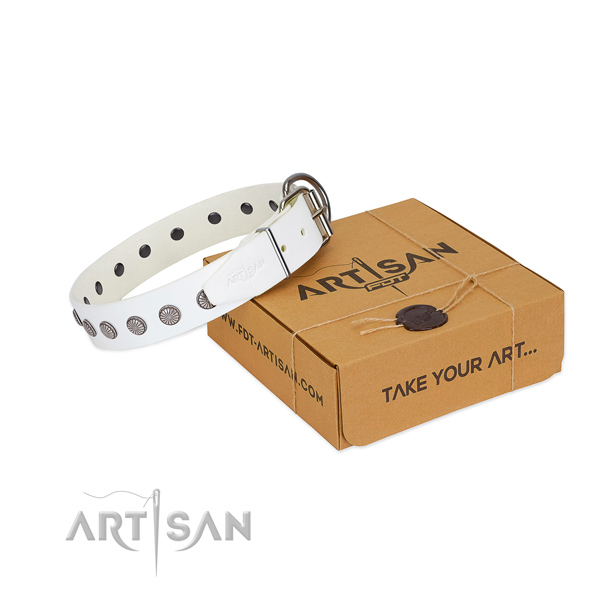White leather dog collar with unique decorations for stylish walks