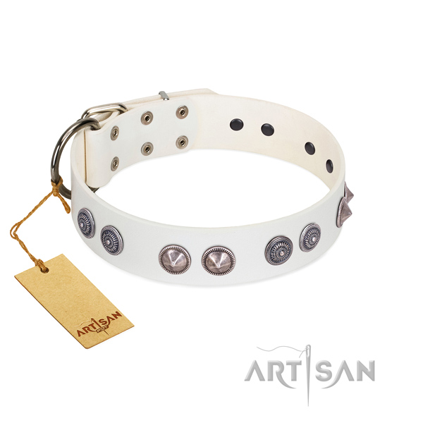 Catchy FDT Artisan white leather dog collar