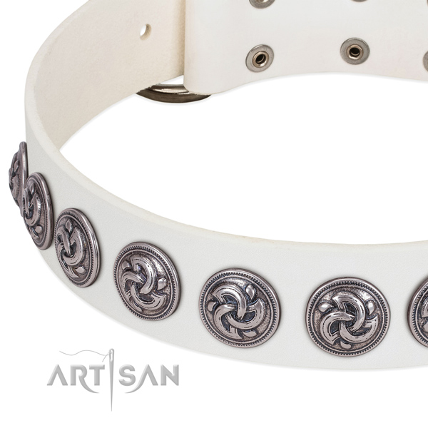 Leather dog collar with silver-like brooches with fancy engraving