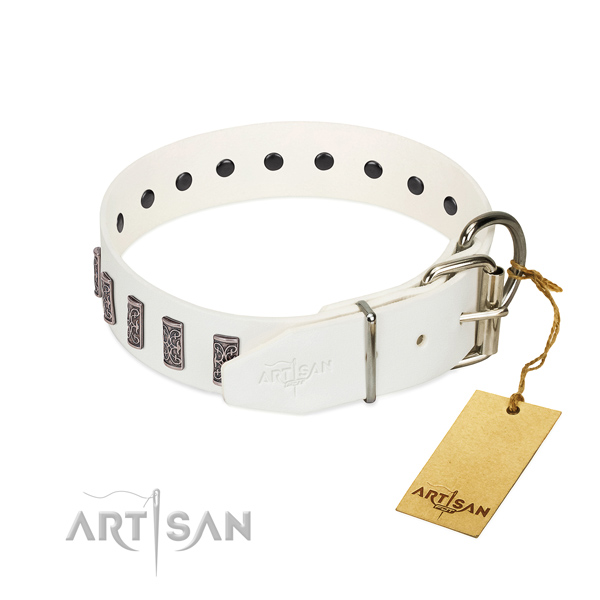 Leather dog collar with chrome-plated rust-proof hardware