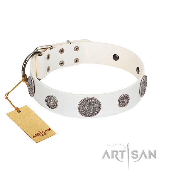Fabulous FDT Artisan leather dog collar