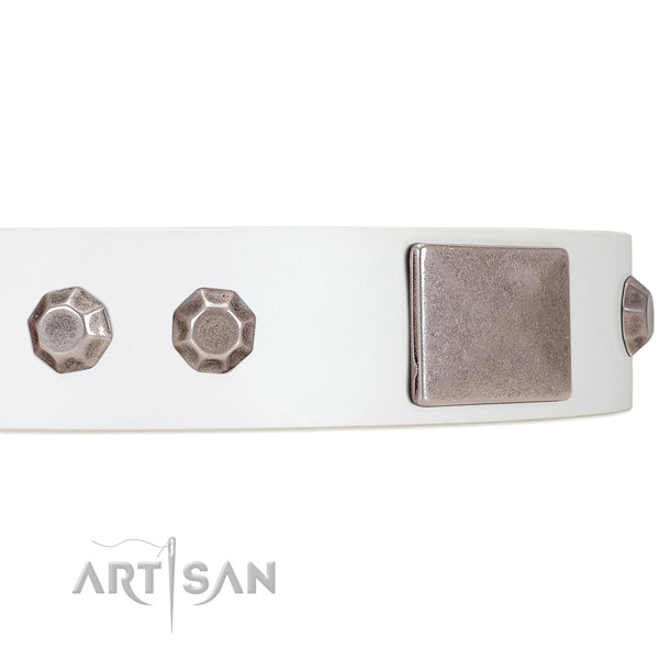 Reliably Set Decorations on White Leather Dog Collar