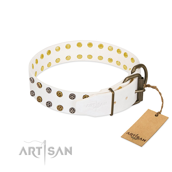 Reliable Artisan dog collar for daily activities