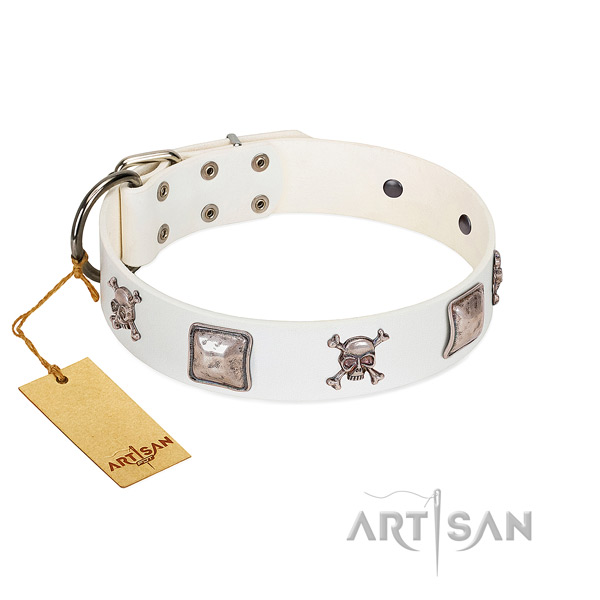 Trendy FDT Artisan leather dog collar