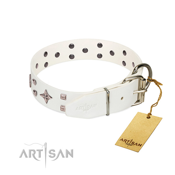 Upmarket gentle leather dog collar for daily wear