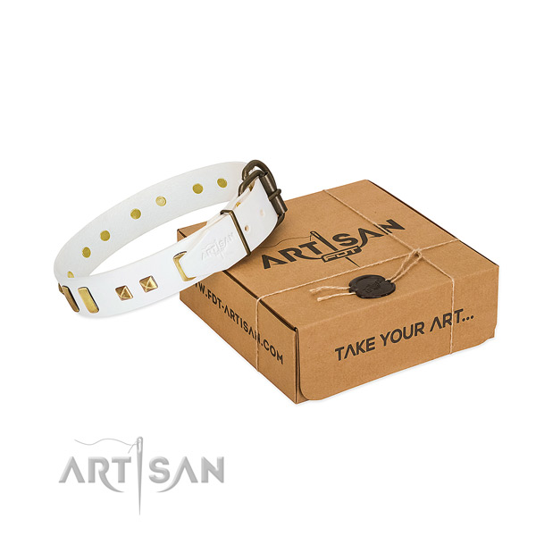 White Dog Collar Made of Premium Quality Materials