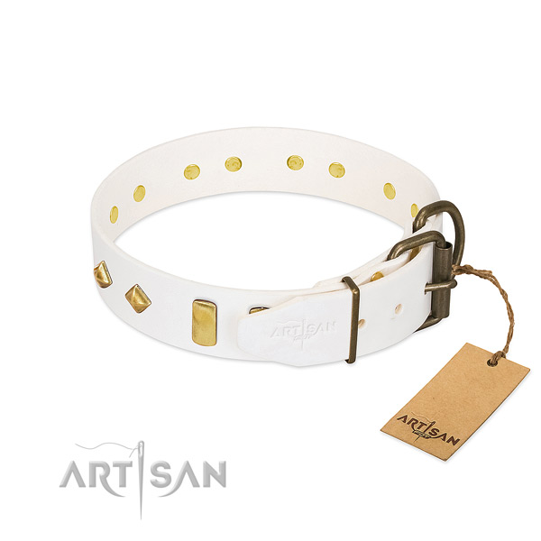 Non-toxic FDT Artisan Dog Collar for Daily Use