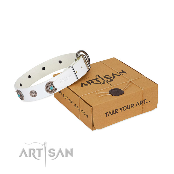 FDT Artisan leather dog collar for stylish walks