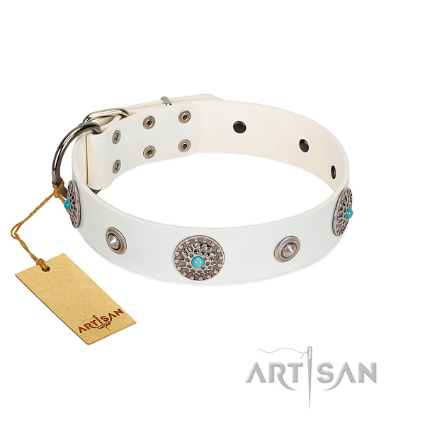 Stylish FDT Artisan leather dog collar