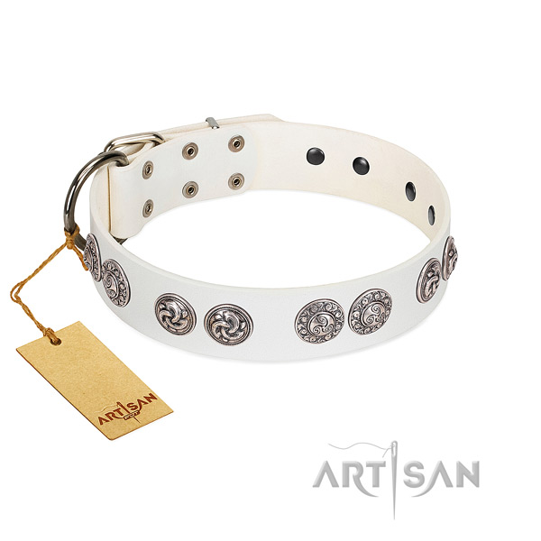 Superior white leather dog collar with riveted