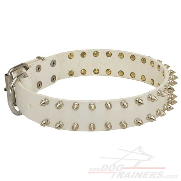 Spiked and riveted Leather Collar for Dog Walking