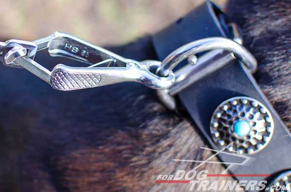 Rust proof nickel fittings for decorated leather collar for Pitbull
