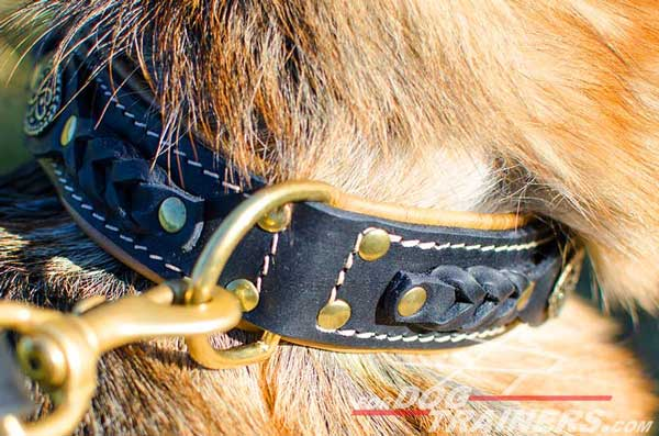 Brass Solid D-Ring Placed At The Back Of The Neck for Fast Leash Connection