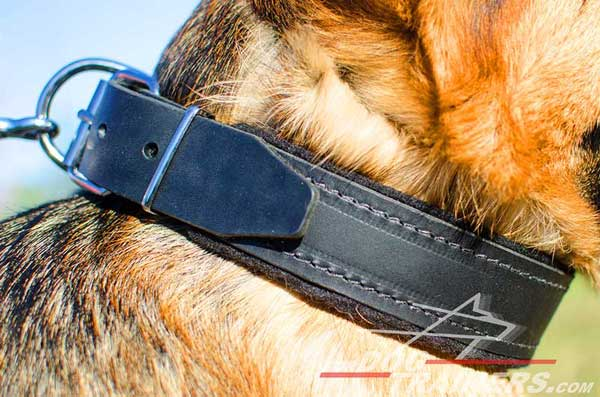 Dog Collar Leather with Border Stitching for Training GSD