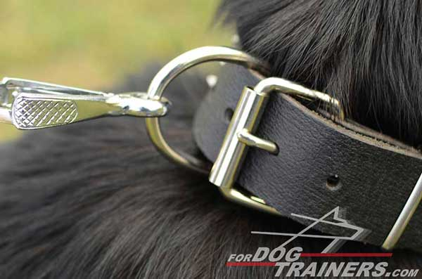 Durable D-Ring and Buckle Made of Steel Coated With Nickel for Corrosion Resistance
