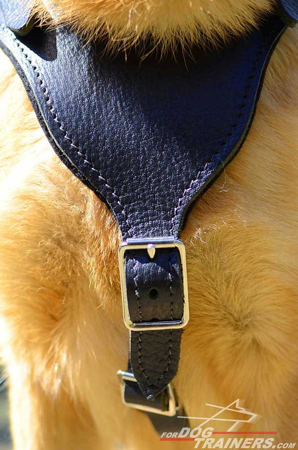 Nickel Plated Buckle of Leather German Shepherd Harness