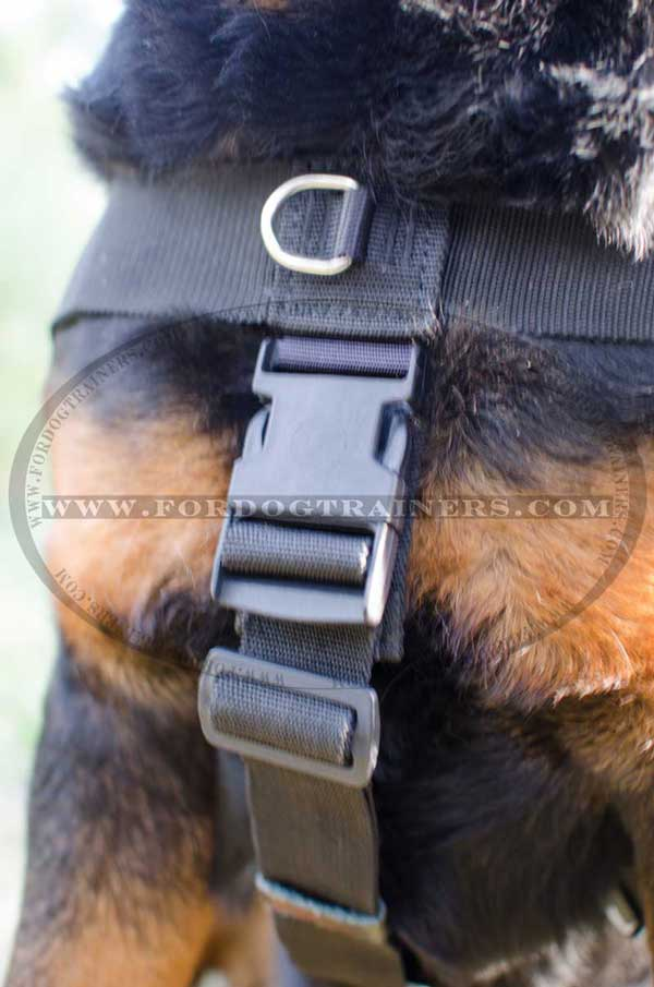 Nylon harness with plastic quick release buckle