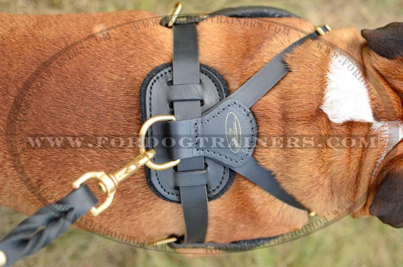 Tracking/Pulling Leather Dog Harness- english bulldog harness [H5 ...