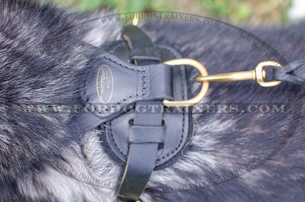 Comfy Back Plate of Leather Dog Harness