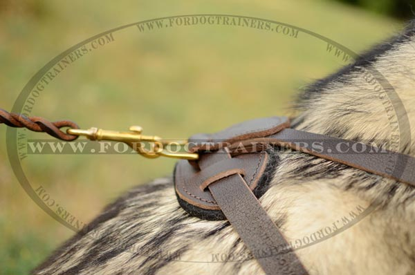 Soft Back Plate and D-Ring of Leather Dog Harness for Malamute