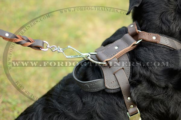 Dog harness with felt padded back plate