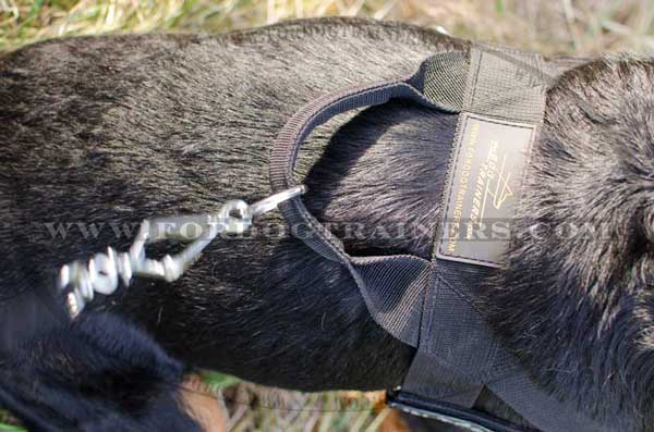Nylon Harness with back plate