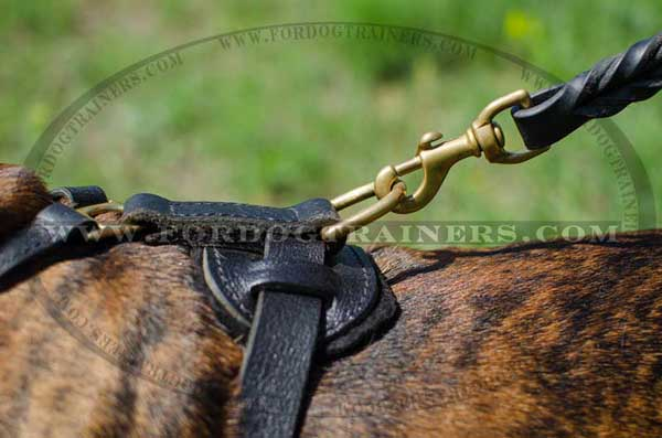 D-ring for secure leash attachment