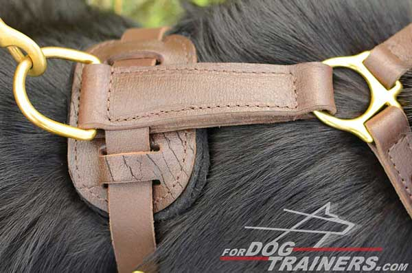 Rustproof Brass D-Ring of German Shepherd Harness Leather