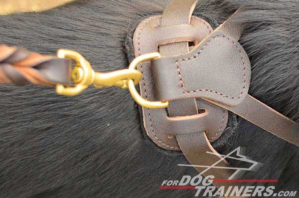 Brass D-Ring of German Shepherd Harness Leather Padded