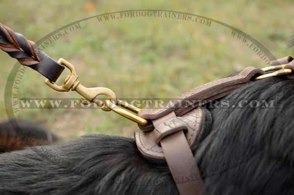 Brass D-Ring of Walking German Shepherd Leather Harness