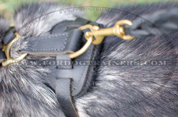 Rustproof hardware of Leather Siberian Husky Harness