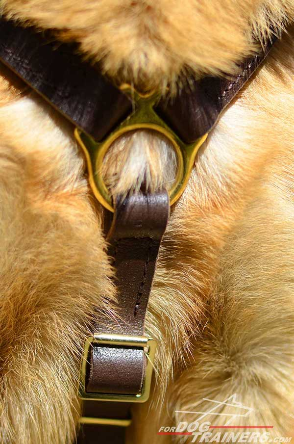 Durable Brass Hardware of Leather German Shepherd Harness
