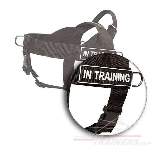 Classy nylon dog harness for training and pulling