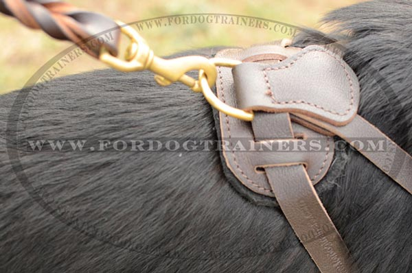 Durable Brass D-Ring on German Shepherd Harness Leather Adjustable