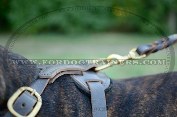 Durable D-Ring on Dog Harness Leather Decorated Chest