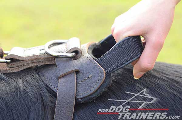 Durable Training Handle of German Shepherd Harness Leather Dog Walking