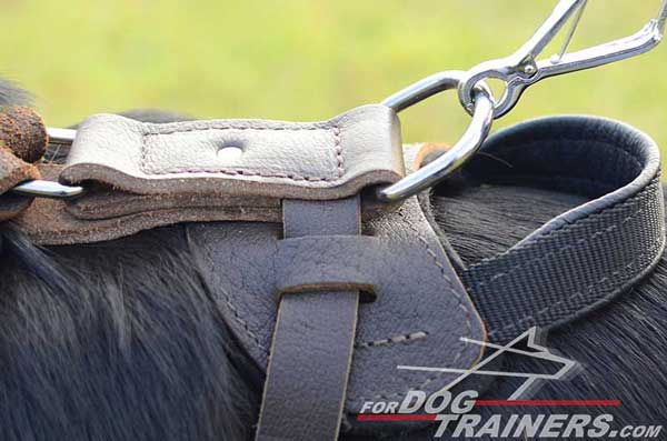 Nickel D-Ring on German Shepherd Harness Leather Dog Training Supply