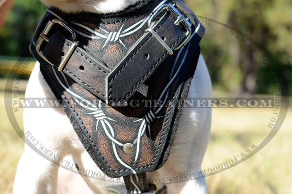 Durable Painted Leather Chest Plate of Dog Harness
