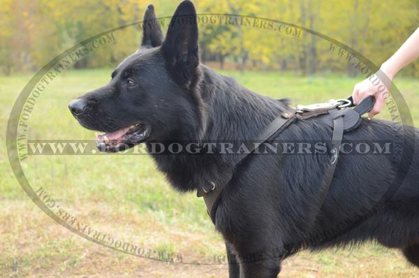 Durable German Shepherd Harness Leather with Comfy Handle
