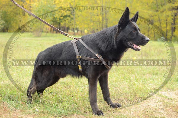 Durable Pulling German Shepherd Harness Leather Reliable