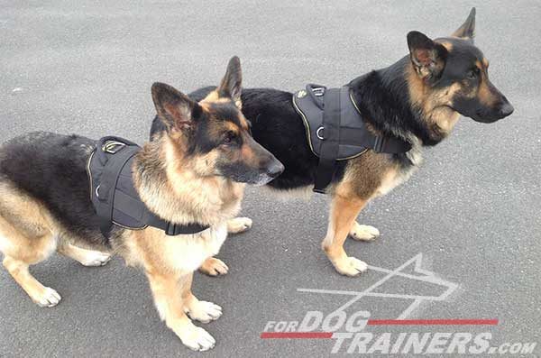 Nylon Pulling German Shepherd Harness with Handle