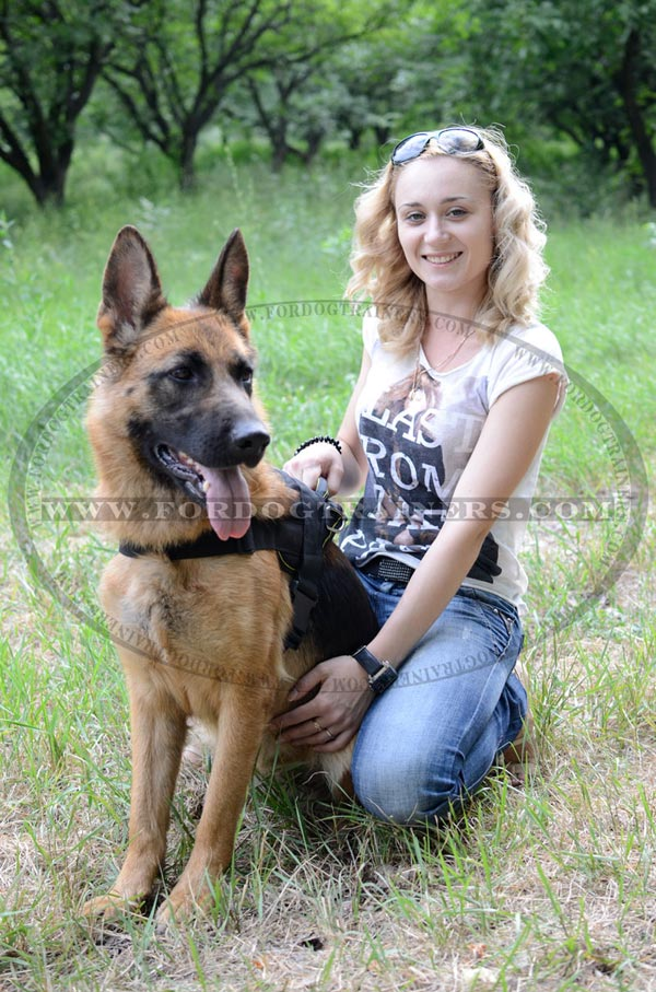 Nylon Adjustable German Shepherd Harness Pulling Training
