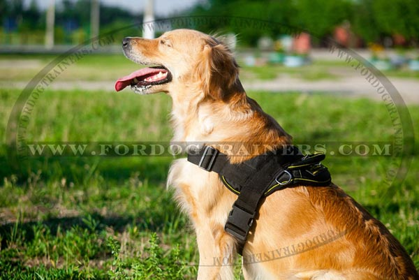 Any Weather Canine Harness for Large and Medium Breed Dogs