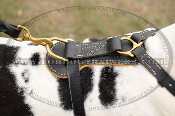 Leather Great Dane harness with reliable stitching and brass D-ring