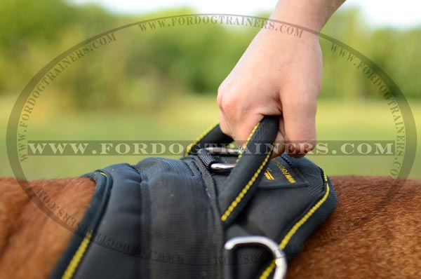 Round Handle of Nylon English Bulldog Harness